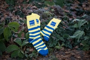 BCIT Alumni yellow and blue striped socks