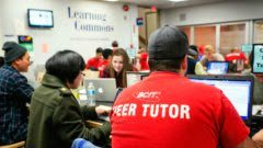 Man with grey ball cap wearing a red t-shirt with words, BCIT Peer Tutor, printed on back in white letters.