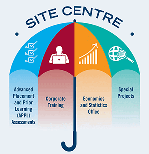 Site centre of excellence umbrella.