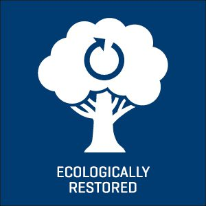Ecologically restored icon.