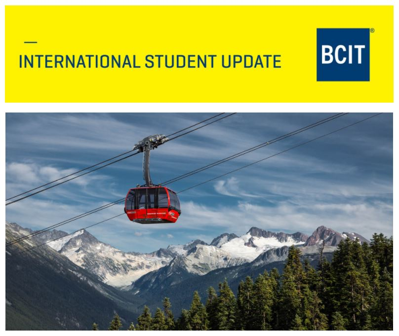 Snip of the International Student Update newsletter