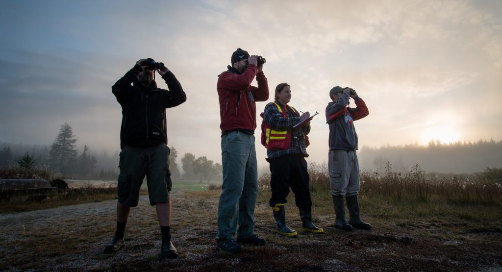 four people looking far with the sky in the background