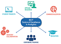 Centre of excellence in analytics diagram.
