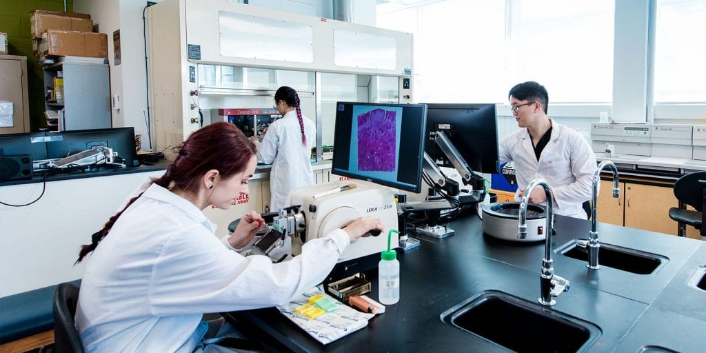 image of students in medical laboratory.
