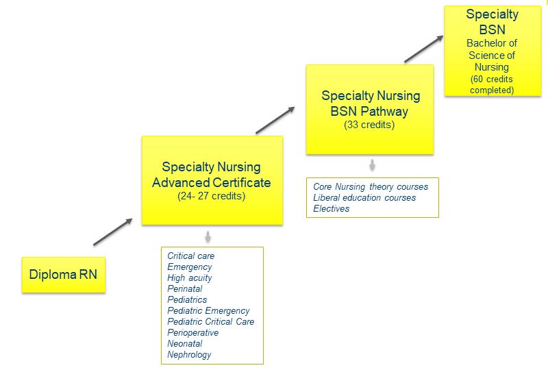 specialty nursing BSN Pathway diagram