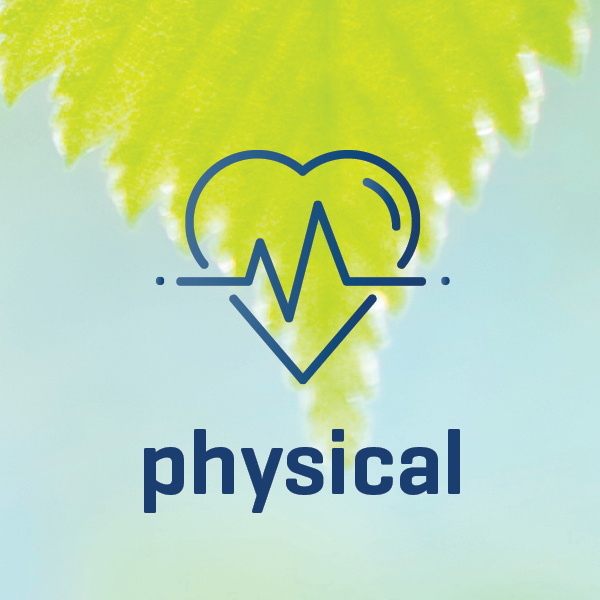 wellness_works_icon_physical