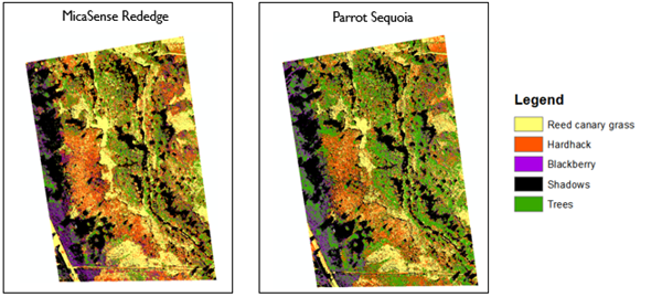 Side by side multispectral maps, one labelled MicaSense rededge and one labelled Parrot Sequoia