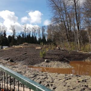 Guichon Creek before renovation